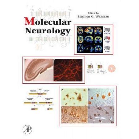 Molecular Neurology (HARDCOVER)
