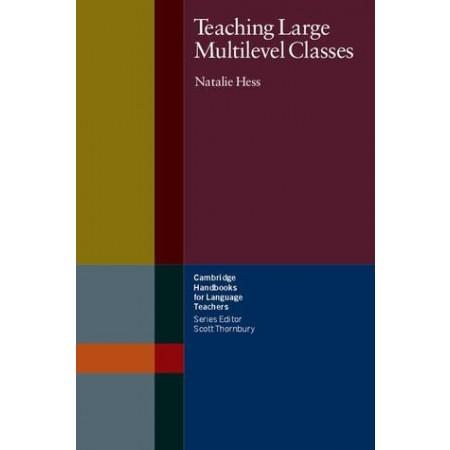 Teaching Large Multilevel Classes