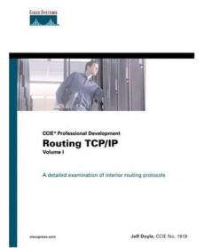 Routing TCP/IP Volume I (CCIE Professional Development)
