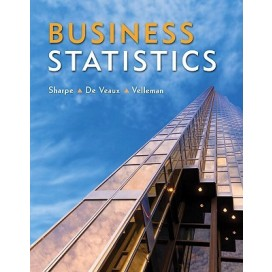 Business Statistics, 1st Edition