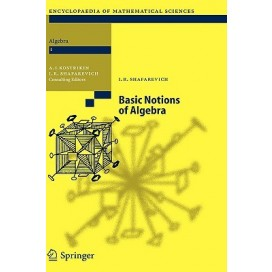 Basic Notions of Algebra (Hardcover)